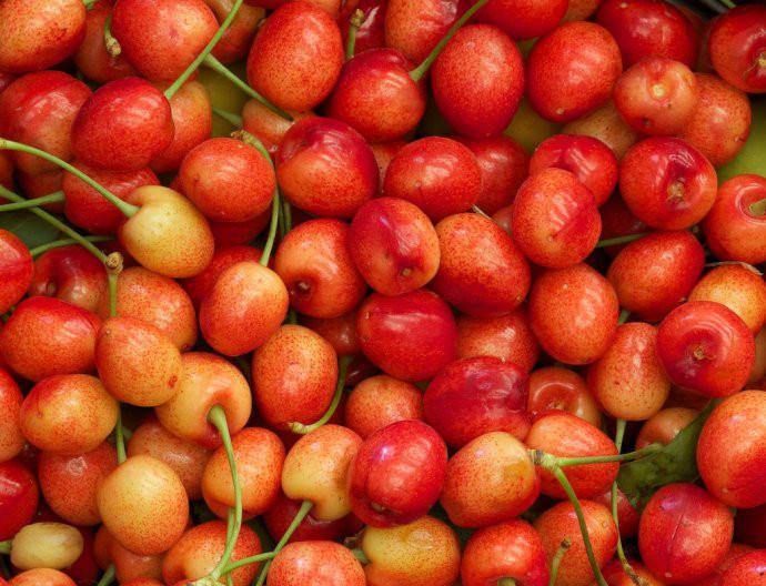 乌鲁木齐水果采摘价格