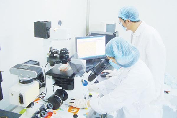 东弘药业臭氧油臭氧抑菌液应用新技术直肠给药的适用范围