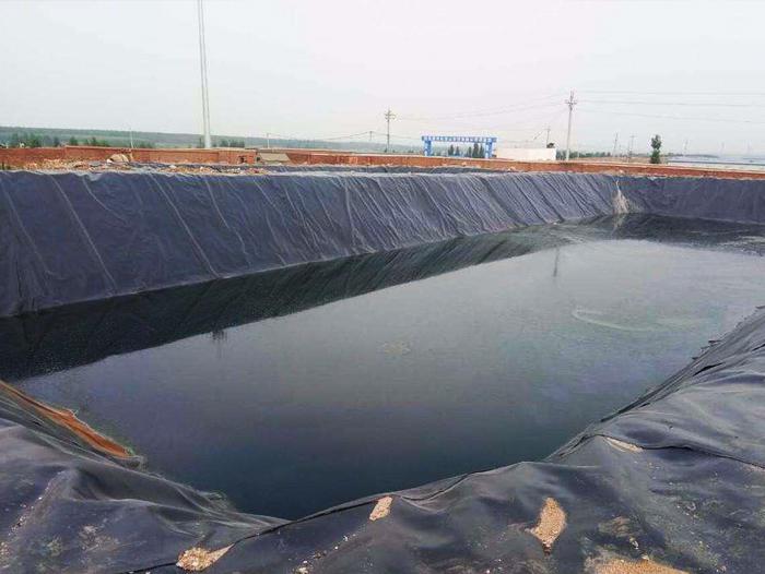 土工膜对水质和鱼类有没有污染?