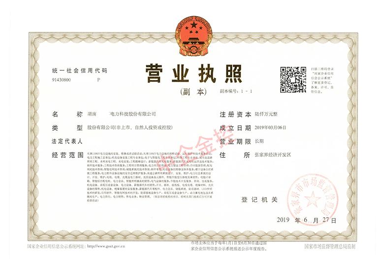 电力科技公司营业执照