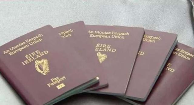 2020年新爱尔兰入籍材料和要求
