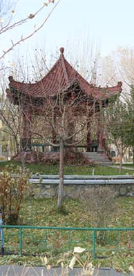 新疆高考辅导学校