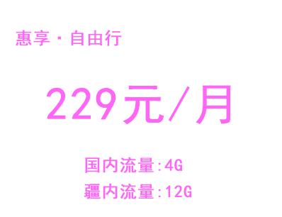 惠享自由行手机卡229元套餐