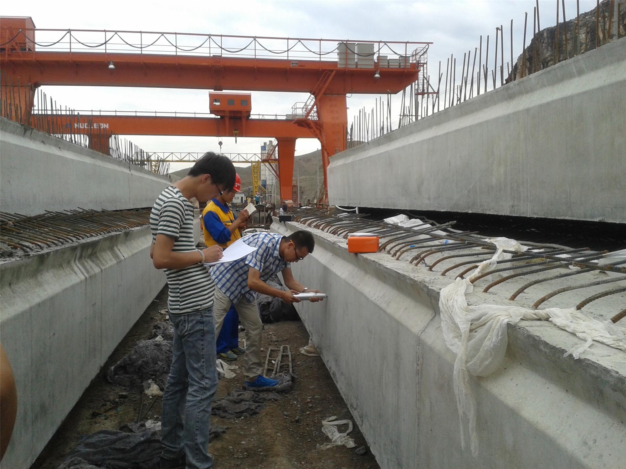 新疆高架粱产品04