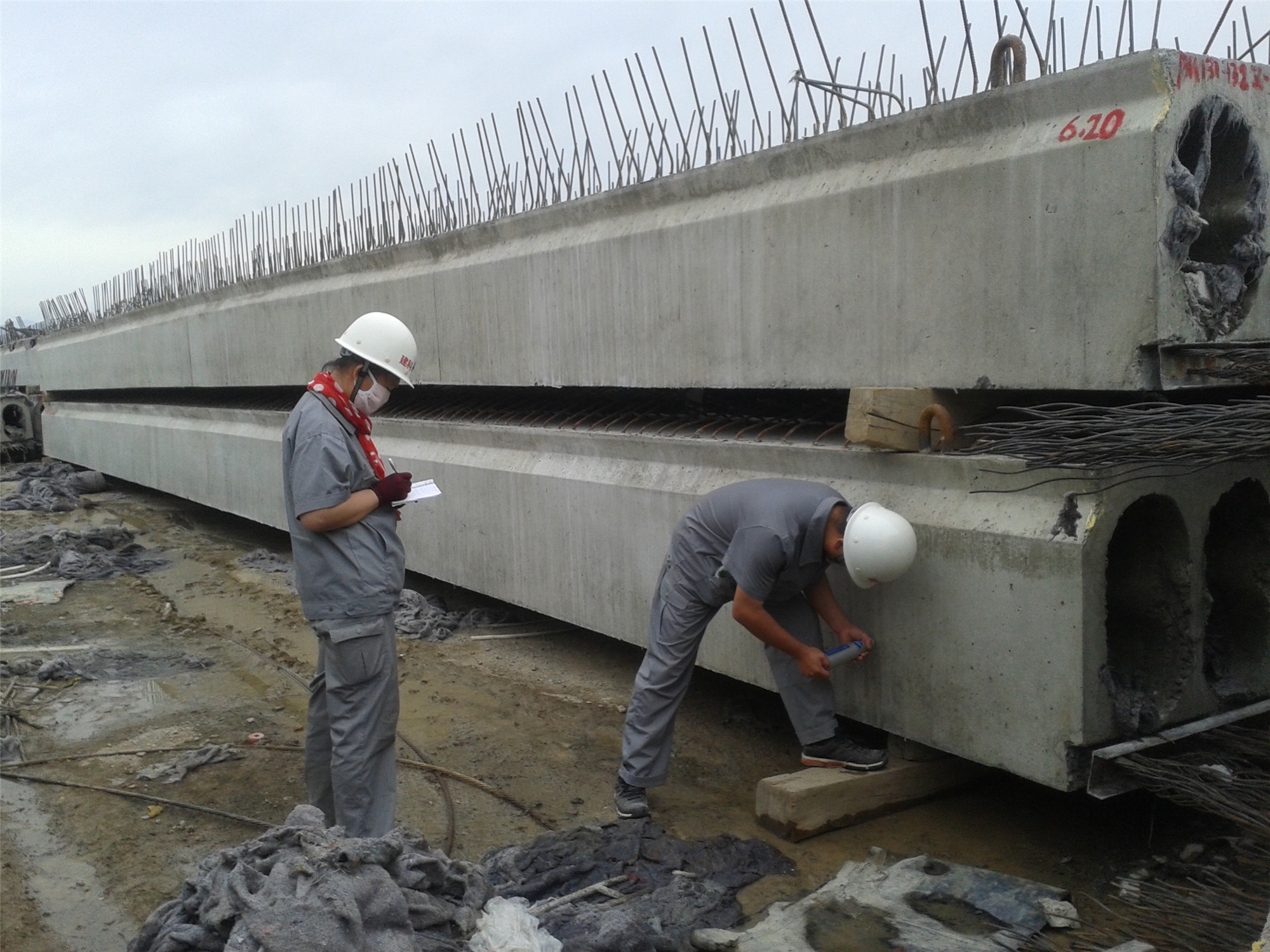 新疆高架粱产品05