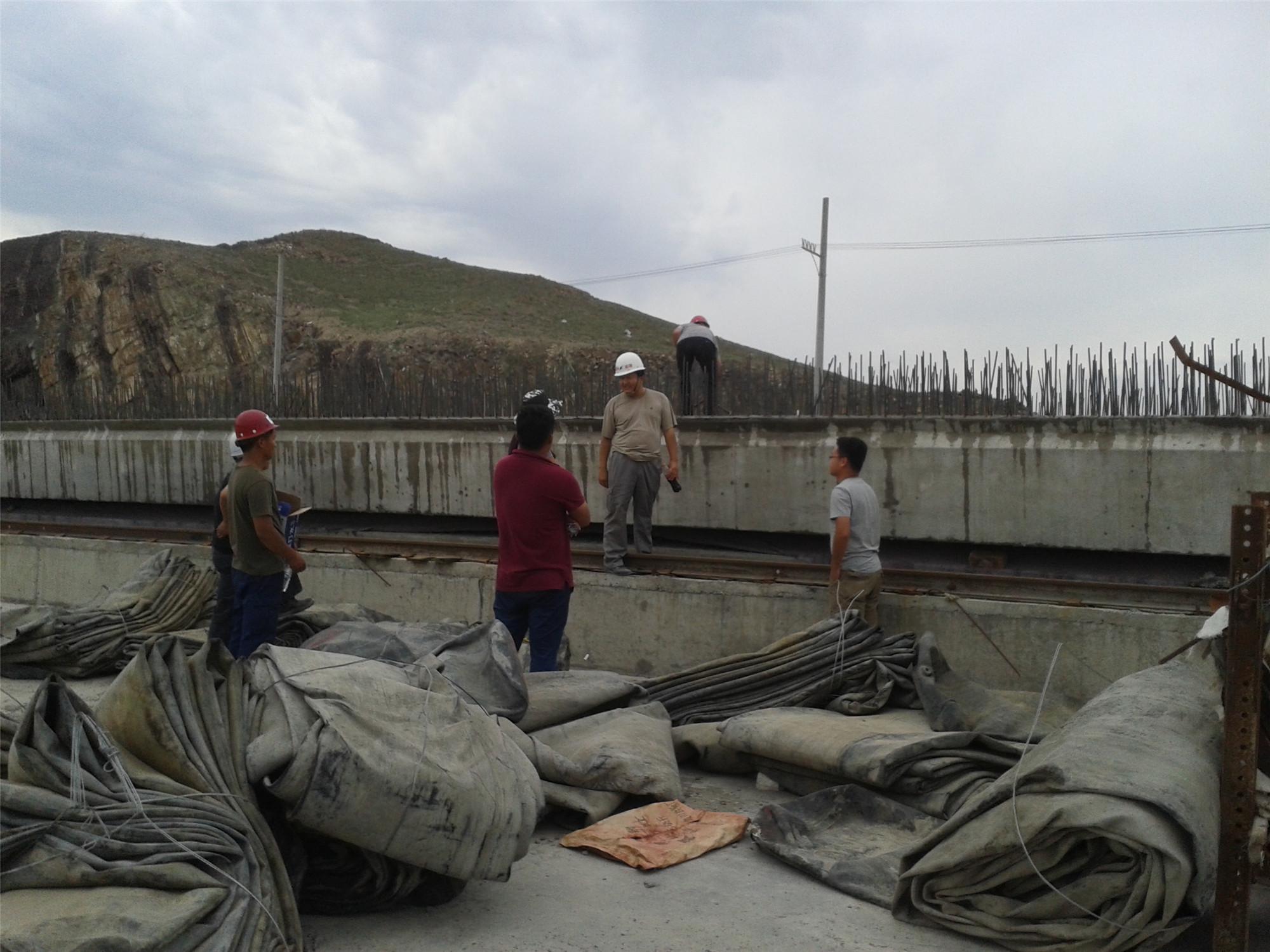 新疆高架粱产品08