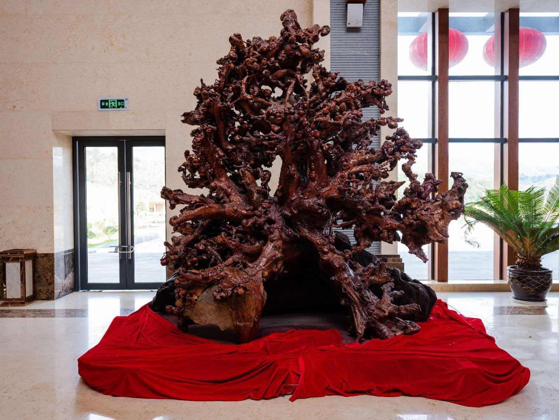 根雕雕刻的流程