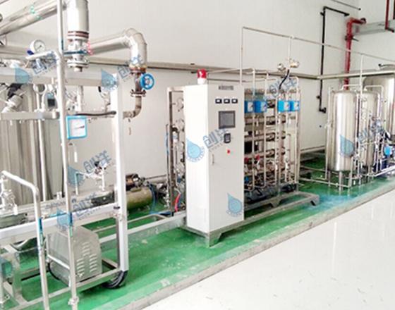 1T/H二级反渗透+EDI纯化水设备