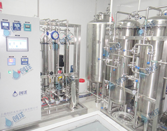 0.5T/H二级反渗透+EDI纯化水设备