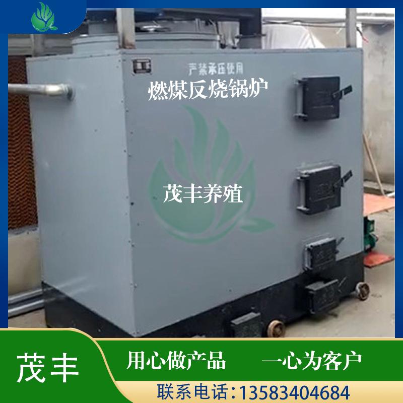 燃煤反烧锅炉
