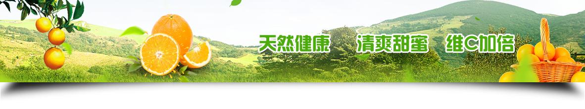 枳壳苗种植对环境的四个要求