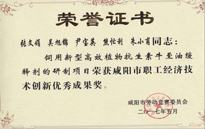 【咸阳市职工经济技术创新优秀成果奖】-荣誉证书