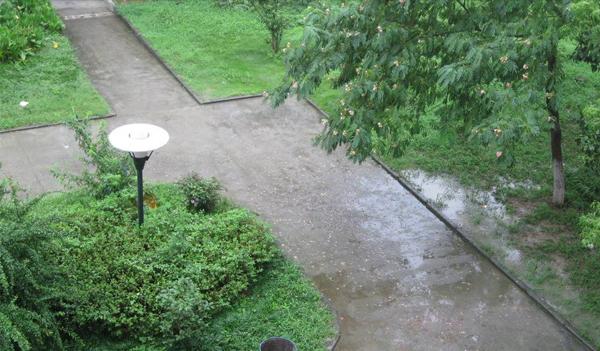 南阳红蚂蚁搬家公司在雨天搬家时会怎么做呢