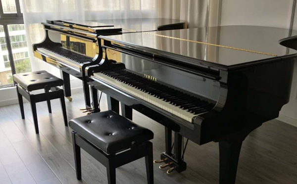 南阳搬家公司提醒搬钢琴时锁键很有必要!