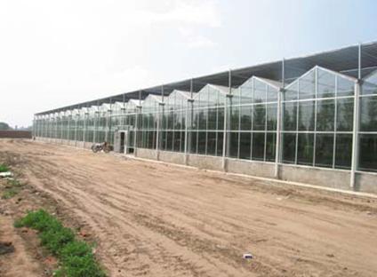 杭州玻璃温室