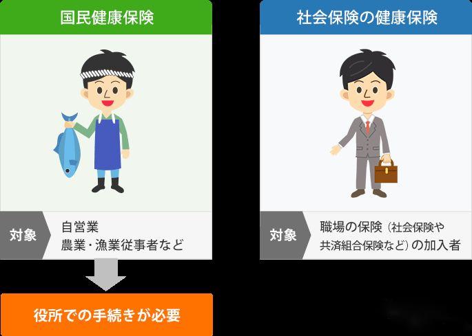 日本医疗保险