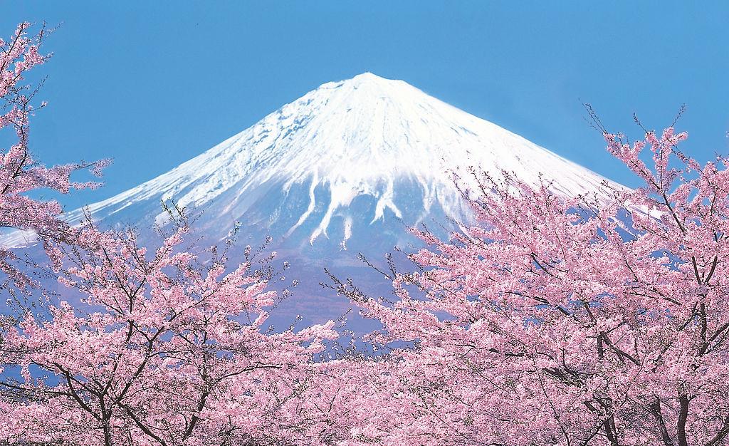 日本签证,日本移民