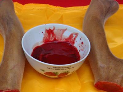 吉安生态养殖鹿血