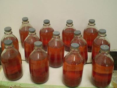 江西生态养殖鹿血酒