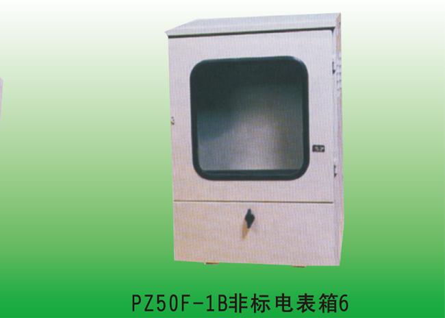 PZ50F-1B非标电表箱