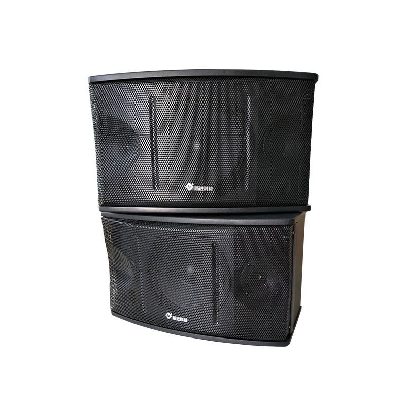 SJ-Y350 8寸专业教学音箱