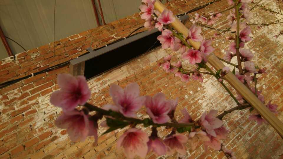 乌鲁木齐温室大棚电暖器