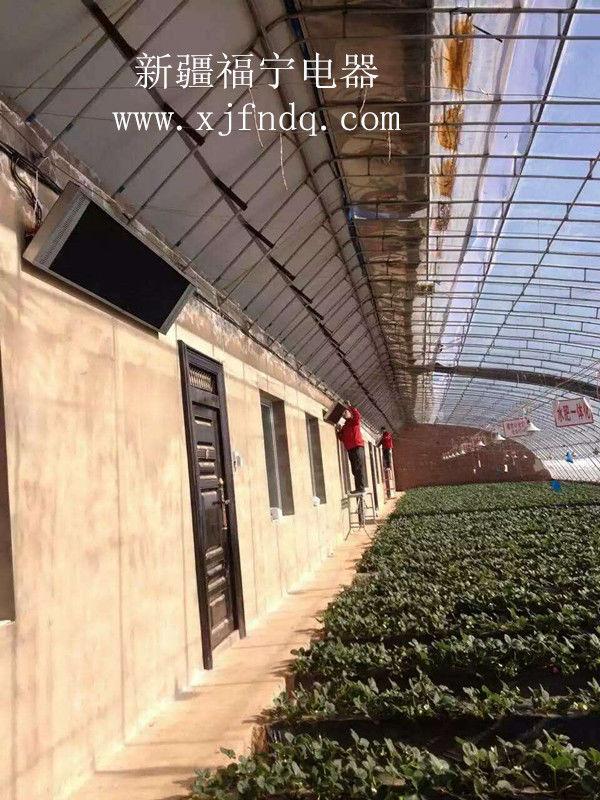 新疆温室大棚采暖工程