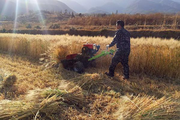 今年春耕投入农机总量将达2200万台