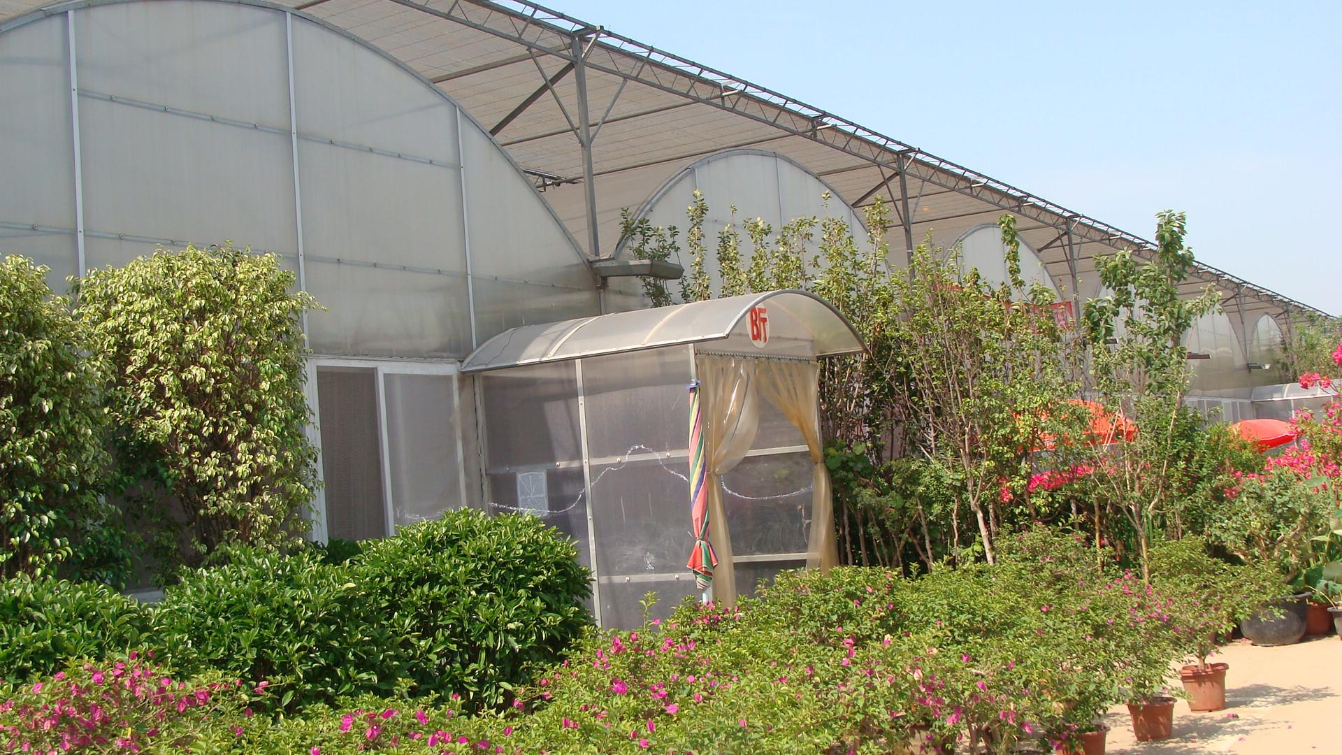 防腐温室棚