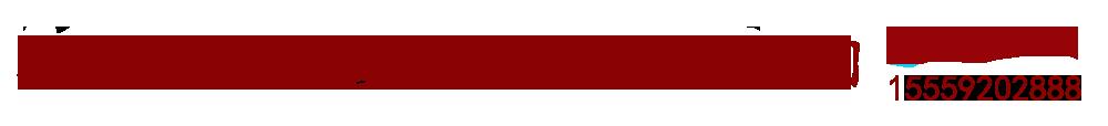 新疆合力电子衡器公司