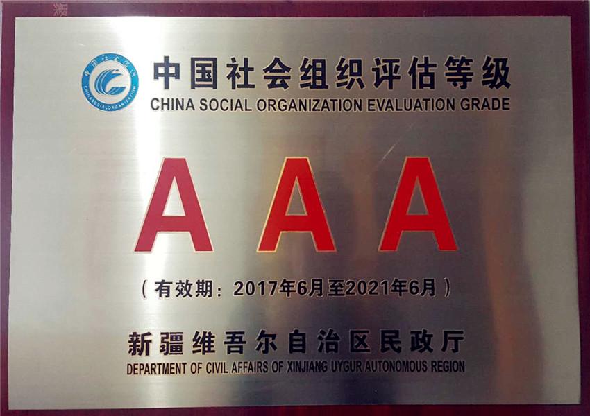 中国社会组织评估3A 级