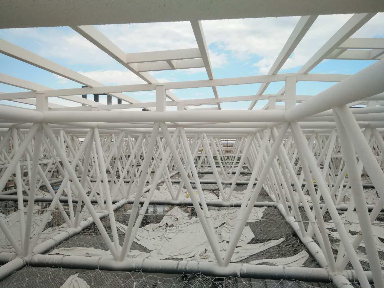 新疆广汽传祺自主品牌总装车间 网架万博man涂料工程建筑面积3万平方米
