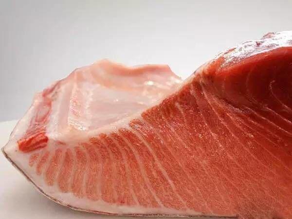 西班牙金枪鱼