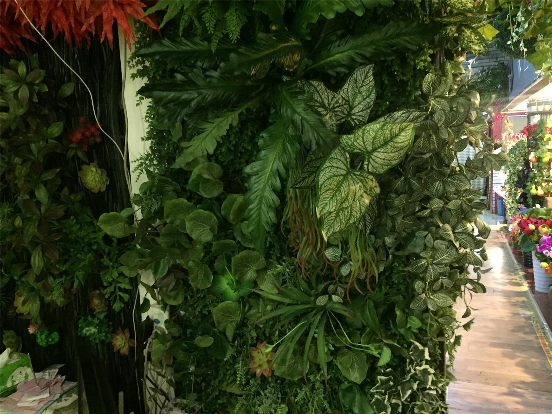 家装绿植效果墙