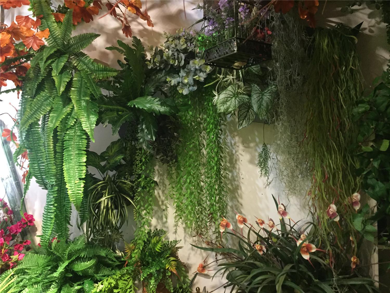 室外绿植效果墙
