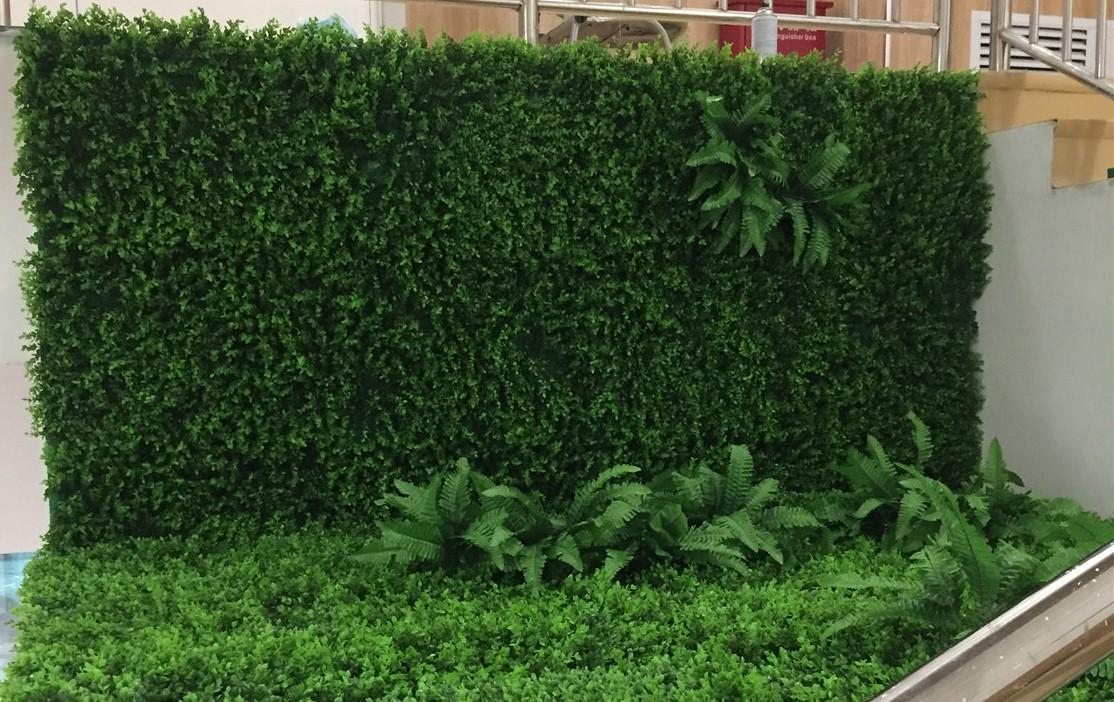 绿植效果墙