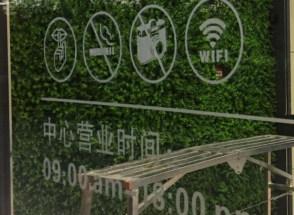 绿植效果墙价格
