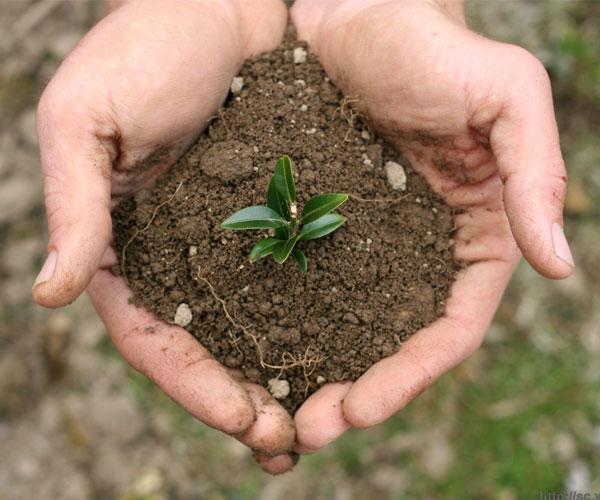 环保咨询及管家服务