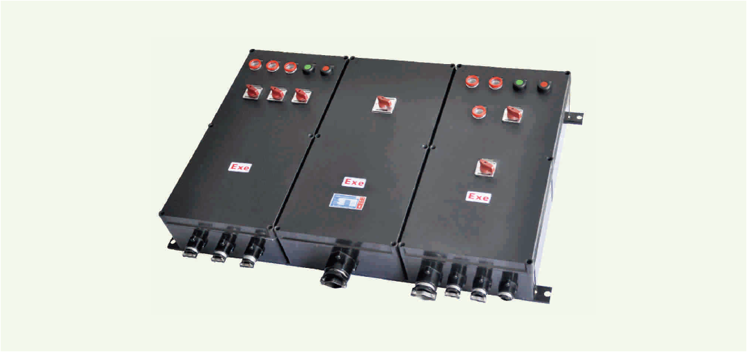 BXM(D)8030 系列防爆防腐照明(动力)配电箱(ⅡC、DIP)