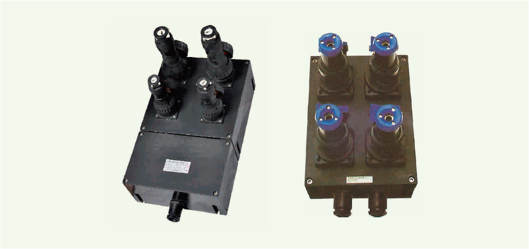 BXS8030 系列防爆防腐电源插座箱(ⅡC、DIP)