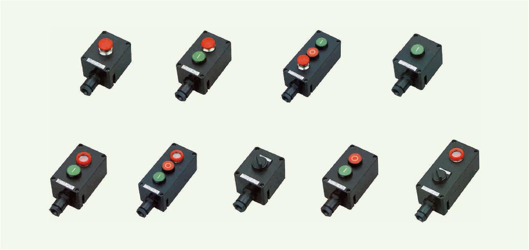 ZXF8030 系列防爆防腐主令控制器(ⅡC、DIP)