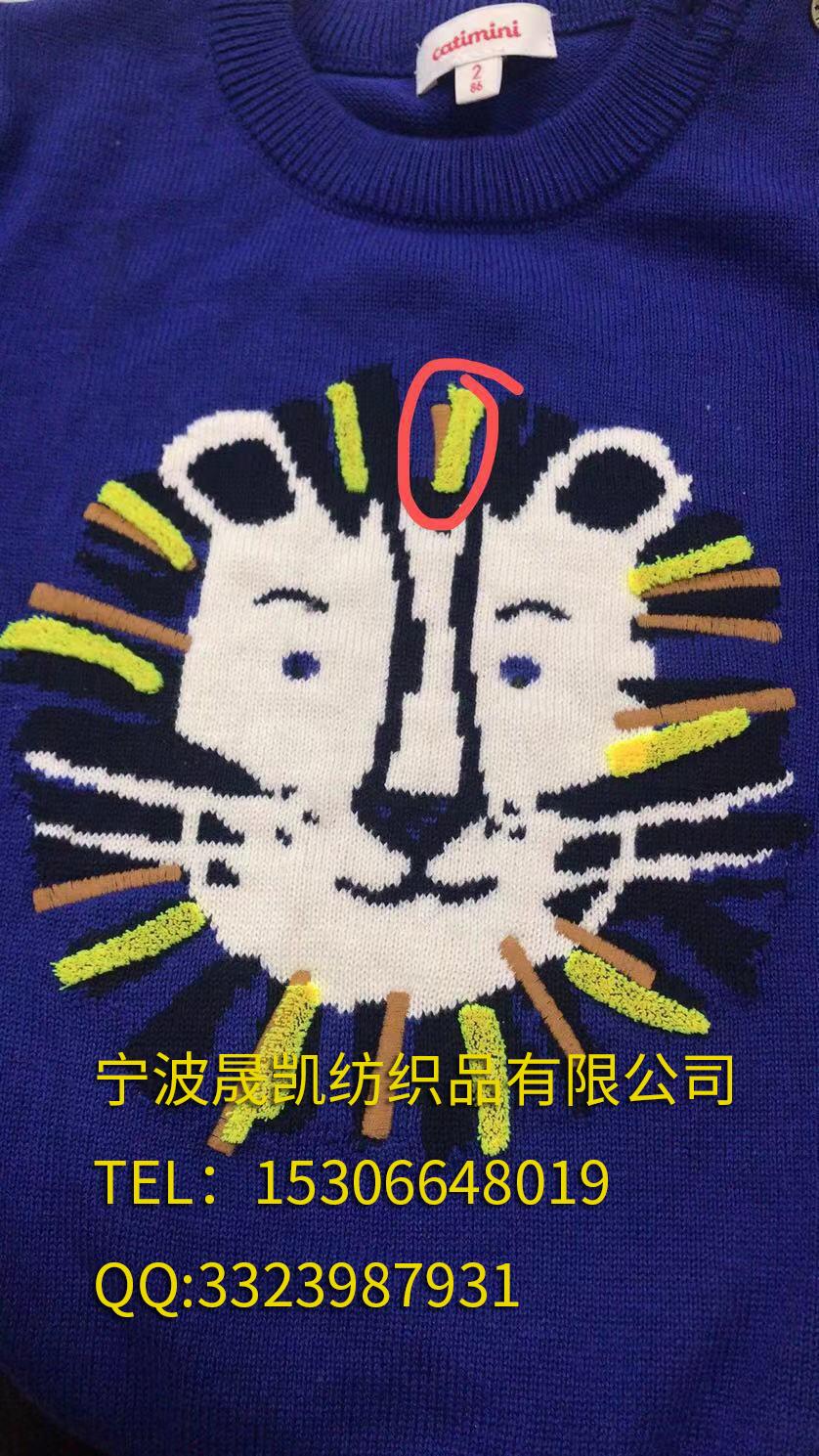 卡通狮子牙刷绣