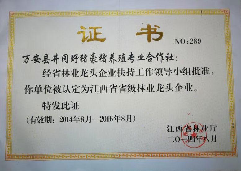 江西省省级林业龙头企业证书