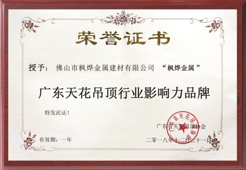 广州天花吊顶行业影响力品牌证书