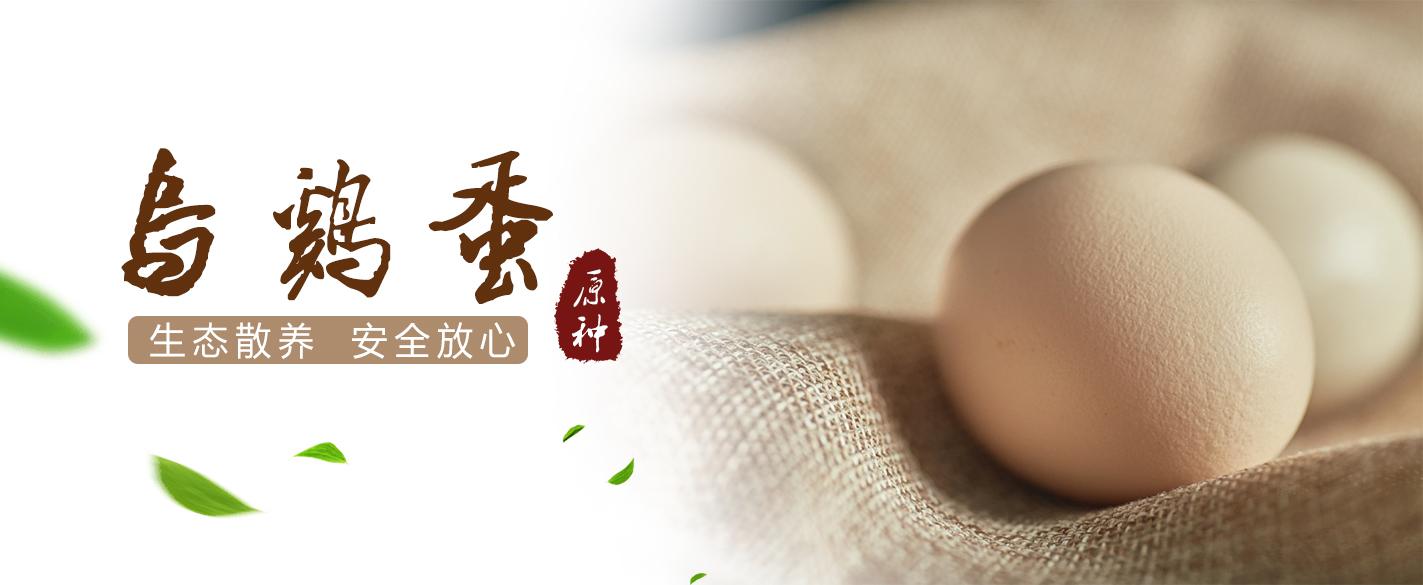 吉安乌鸡蛋分享折叠乌鸡蛋的保存方式