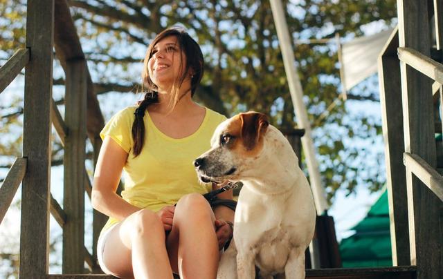乌兰浩特那个兽医好提示狗狗虽然视力不好,但擦眼观色水平一流