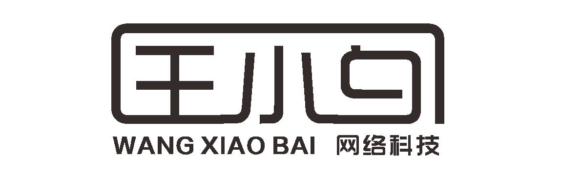 王小白网络科技官网