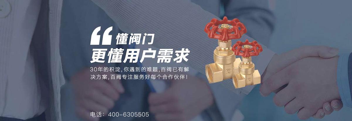 北京电动偏心半球阀