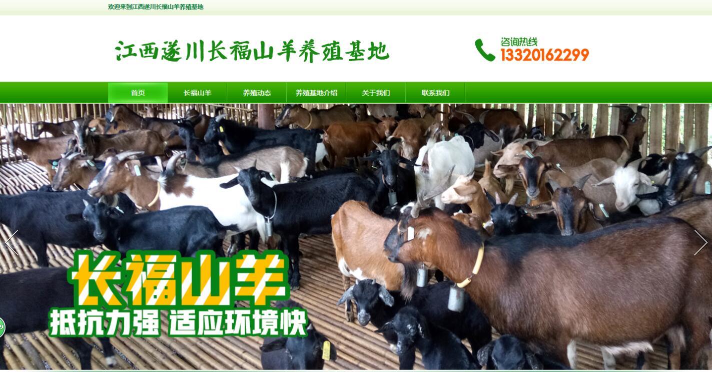 江西遂川长福山羊养殖基地