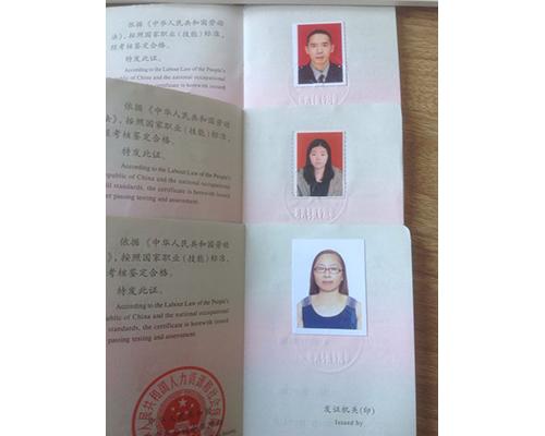 在职员工从业证书